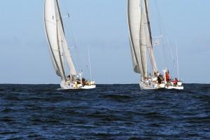 Transat ARC traversée atlantique