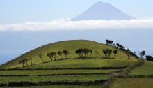 Navigation et croisière aux Açores